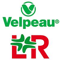 VELPEAU - L&R